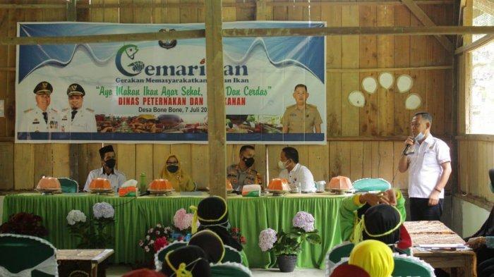 Dinas Perikanan Enrekang Bagikan 11.900 Bibit Ikan di Desa Bone-Bone