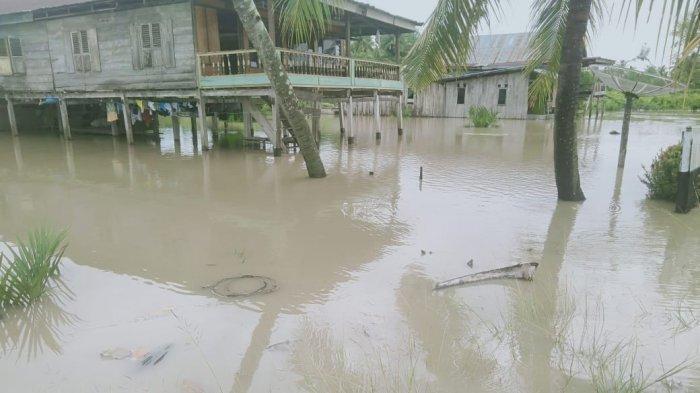 Ratusan Hektare Tambak Udang dan Ikan di Desa Pattiro Sompe Sibulue Terendam Banjir