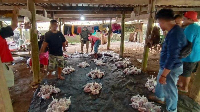 61 Ekor Sapi Disembelih, Tungka Jadi Desa dengan Hewan Kurban Terbanyak di Enrekang