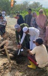 Ina Kartika Kurban di Barru, Ulla di Makassar dan Syahar di Sidrap