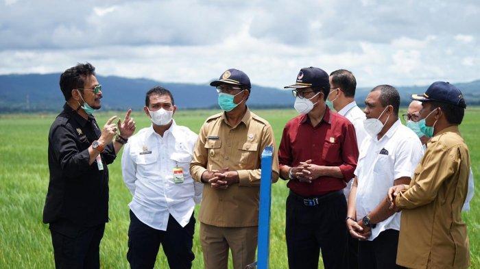 Popmasepi; Produksi Pertanian Indonesia Semakin Baik, Jadi Tidak Perlu Impor