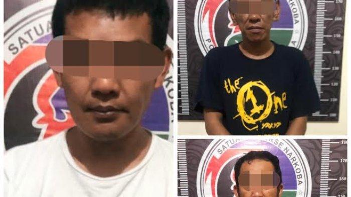 Dua Hari, Polisi Tangkap Tiga Pengedar dan Pengguna Narkotika di Toraja Utara