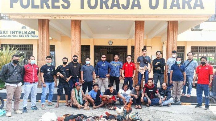 10 Pelaku Judi Sabung Ayam Ditangkap di Toraja Utara, Satu Diantaranya ASN
