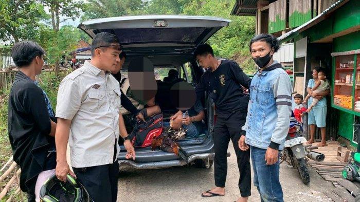 ASN Tana Toraja Ditangkap Judi Sabung Ayam