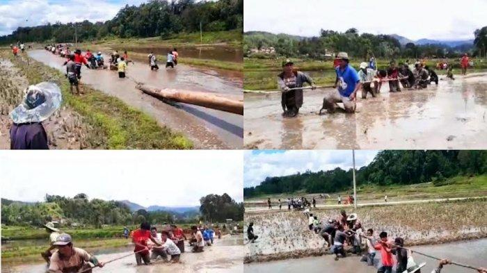 Serunya Tradisi Mangriu' Kayu di Awan Rantekarua Toraja Utara, Warga Saling Lempar Lumpur
