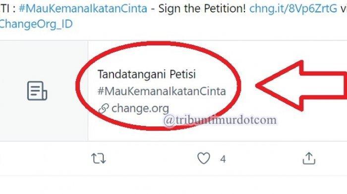 TRENDING Twitter Tandatangani Petisi, Ternyata Sosok Ini yang Bikin Petisi Mau Kemana Ikatan Cinta