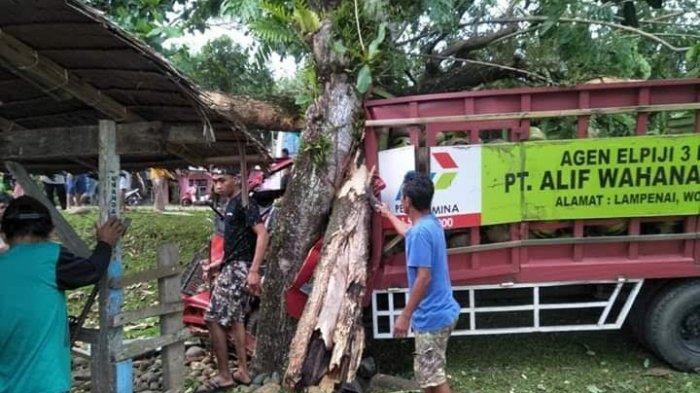 Truk Pengangkut Elpiji Tabrak Pohon di Desa Marabuana, 3 Orang Dilarikan ke Rumah Sakit