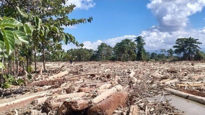10 Korban Banjir Bandang Luwu Utara Masih Belum Ditemukan, Ini Nama-Namanya