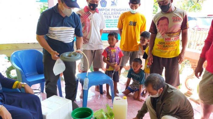Takalar Bakal Produksi Rumput Laut 'Lawi-Lawi' Organik, Target Ekspor ke Jepang