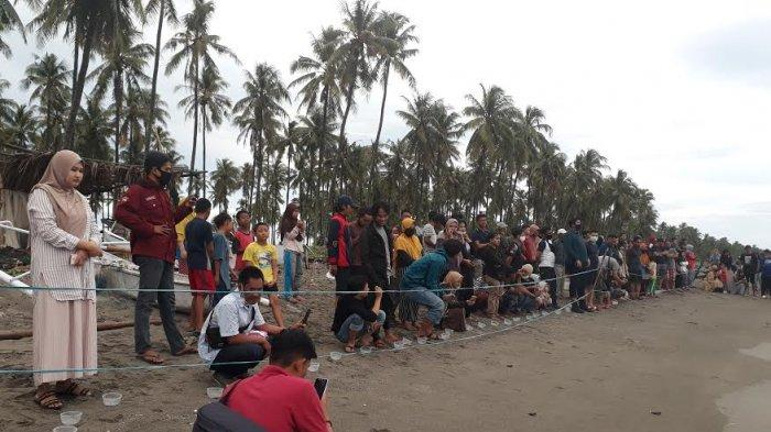 Unismuh Ikut Bantu Upaya Pelestarian Penyu di Pantai Lowita Pinrang