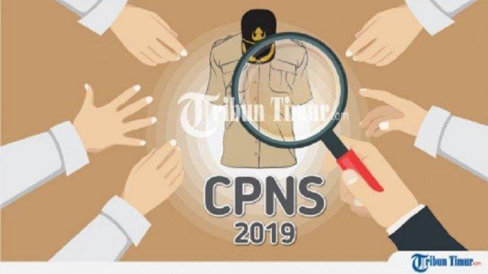 UPDATE CPNS 2019 Peluang Besar Bagi Tenaga Honorer, Pelamar Umum Perhatikan 7 Tahapan Berikut