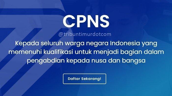 Pendaftaran Cpns 2021 Terbaru - Informasi CPNS/ASN ...