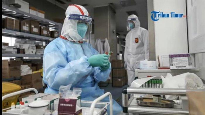 KABAR GEMBIRA, China Akhirnya Temukan Obat Virus Corona, Ternyata Sudah Lama Ada di Indonesia