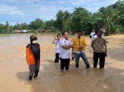 2 Kecamatan di Luwu Dilanda Banjir, Ratusan Hektare Padi Siap Panen Terendam