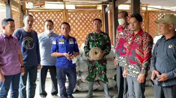Syaharuddin Alrif Edukasi Budidaya Tanaman Porang di Bontolempangan Gowa