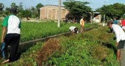 Warga Desa Parangmata Takalar Kerja Bakti Bersihkan Lingkungan