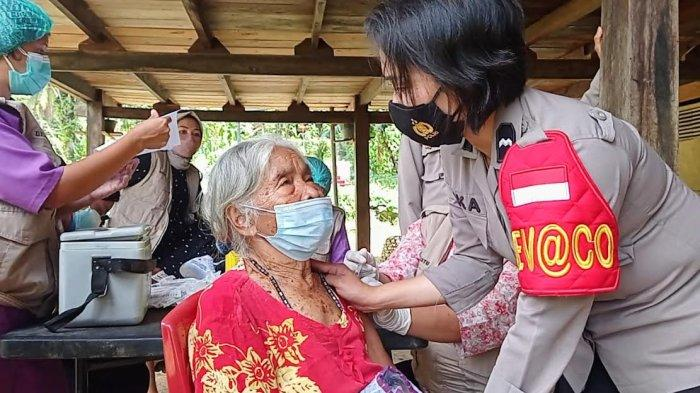 Warga Tombang Kalua Tana Toraja Divaksin di Bawah Kolong Rumah