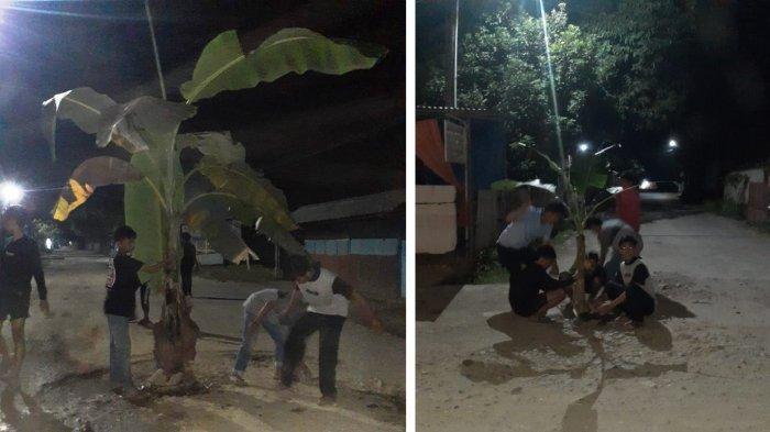Kritik Pemerintah, Warga Pangkep Tanam Pisang di Jalan Berlubang, Warga: Daripada Ancam Nyawa Orang