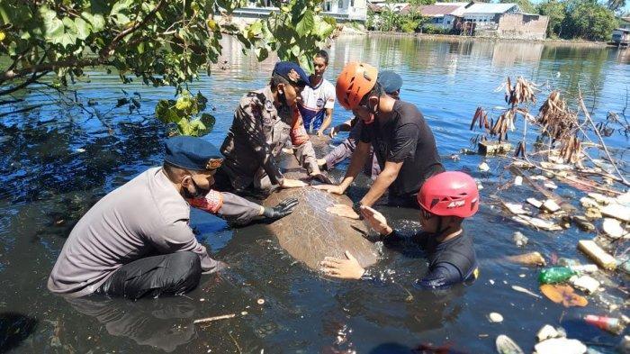Nelayan di Parepare Temukan Ikan Duyung Terdampar di Perairan Tonrangeng