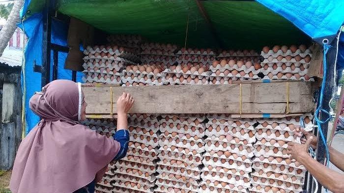 Setelah Lebaran, Harga Telur Ayam Ras dan Daging Ayam Potong Naik di Sinjai