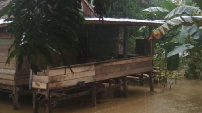 BREAKING NEWS: Diguyur Hujan Sejak Semalam, Sejumlah Wilayah di Bone Tergenang Air
