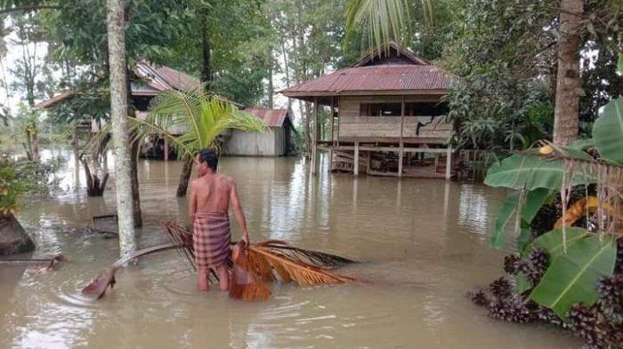 Tiga Dusun di Malangke Barat Luwu Utara Terendam Banjir