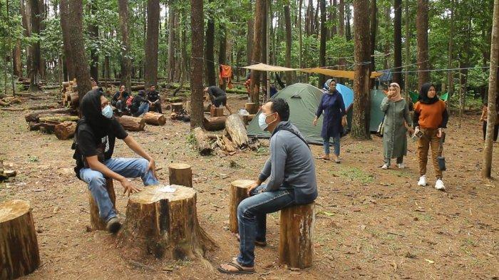 Menikmati Keindahan Alam Hutan Pinus Tala Tala, Sejuknya Bikin Betah