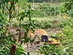 aktivitas-tambang-ilegal-di-sungai-sewo-kelurahan-bila.jpg
