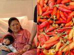 ani-yudhoyono-gemar-kantongi-dan-ngemil-cabai-rawit.jpg