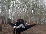 destinasi-wisata-1000-pohon-jati-di-desa-mico.jpg