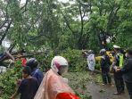dinas-lingkungan-hidup-gowa-bersama-dengan-tni-dan-polri-mengevakuasi-pohon-tumbang.jpg