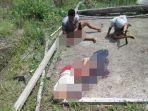 empat-warga-asal-toraja-tewas-dibantai-otk-di-poso-satu-diantaranya-digorok.jpg