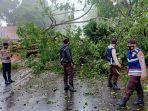 hujan-deras-disertai-angin-kencang-mengakibatkan-sebuah-pohon-tumbang.jpg