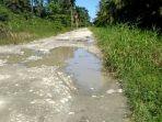 jalan-penghubung-antara-kecamatan-di-kabupaten-luwu-utara-sulawesi-selatan.jpg