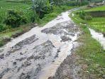 jalanan-rusak-dikeluhkan-warga-di-kampung-tabbassi-dusun-lebang-manai-desa-paitana.jpg