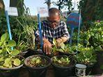 kades-nikkel-basar-j-tosalili-membersihkan-hama-dari-koleksi-tanaman-herbal.jpg