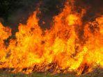 kebakaran-pabrik-korek-api-di-medan.jpg