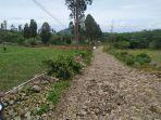 kondisi-jalan-menuju-lokasi-wisata-pinus-rombeng-di-desa-bonto-lojong.jpg
