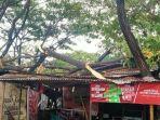 kondisi-kios-pedagang-kena-pohon-tumbang-di-pasar-sentral-palakka-pada-selasa-232021.jpg