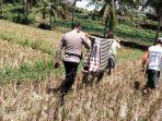 la-nuhu-la-nuhu-50-warga-dusun-botto-desa-barakkae-kecamatan-lamuru-28102020.jpg