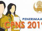 link-formasi-cpns-2019-pemda-dan-kementerian.jpg