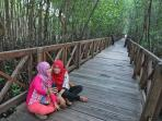 mangrove-sinjai-4_20160425_204700.jpg