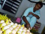 menggagas-industri-tepung-telur-di-dalam-negeri.jpg