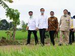 menteri-pertanian-ri-syahrul-yasin-limpo-saat-bersama-dengan-presiden-ri-jokowi-1-582020.jpg