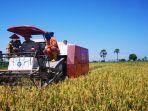 menteri-pertanian-syahrul-yasin-limpo-syl-mengunjungi-kabupaten-jenoponto.jpg