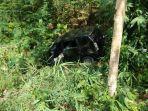 mobil-avanza-yang-alami-kecelakaan-di-poros-bone-sinjai-jumat-1162021.jpg