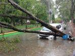 mobil-toyota-agya-tertimpa-pohon-tumbang-saat-parkir-di-jl-simpurusiang.jpg