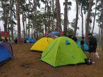 pengunjung-camping-di-lokasi-wisata-hutan-pinus-rombeng-2382021.jpg