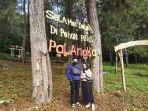 pengunjung-sedang-menikmati-objek-wisata-pohon-pinus-batu-mico-palangka.jpg