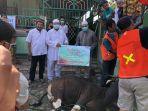 penyembelihan-hewan-kurban-bni-syariah-di-masjid-al-azhar-kota-makassar.jpg